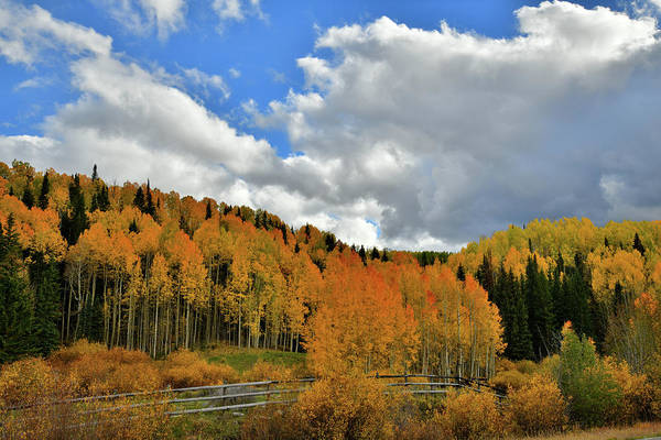 Photograph - Fall Colors And Clouds Along Highway 145 by Ray Mathis
