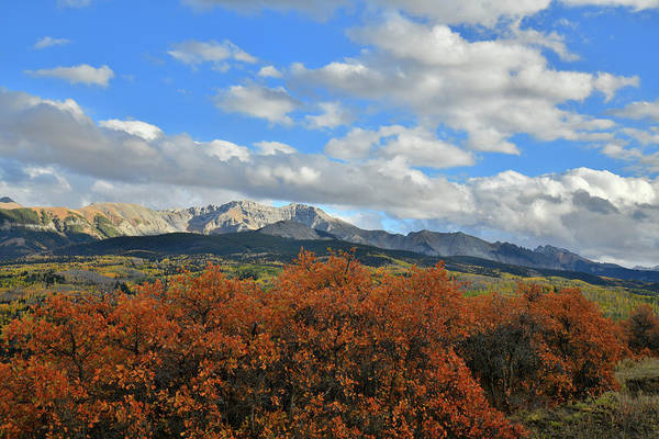 Photograph - Fall Colors And Mountain Skyline From Telluride Airport by Ray Mathis