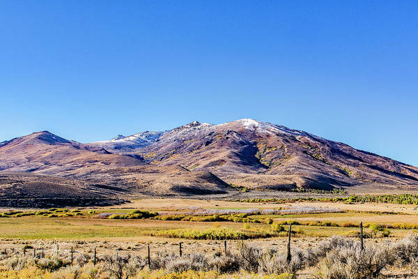 Photograph - Fall Colors And Snowcap by Jim Thompson