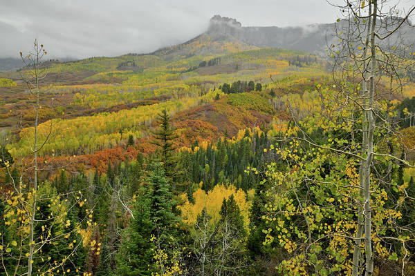 Photograph - Fall Colors Ascending To Owl Creek Pass by Ray Mathis