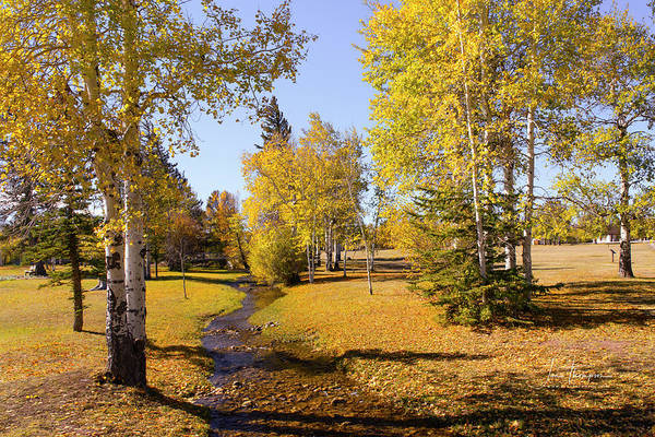 Photograph - Fall Colors At Fort Bridger by Jim Thompson