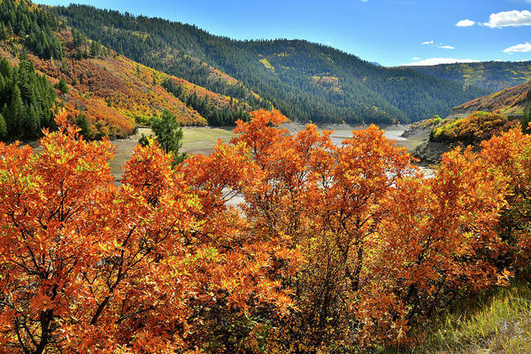 Photograph - Fall Colors Come To The Reservoir Along Highway 133 by Ray Mathis