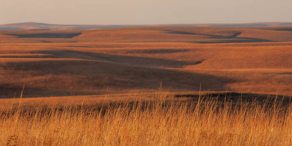 Photograph - Fall Colors  Flint Hills Prairie I by Jeff Phillippi