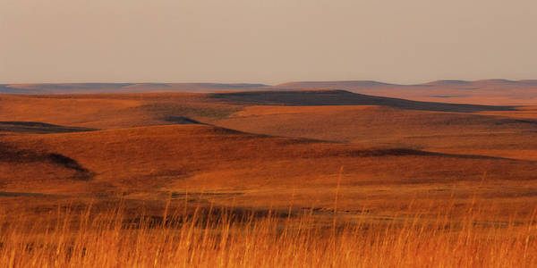 Photograph - fall Colors  Flint Hills Prairie III by Jeff Phillippi