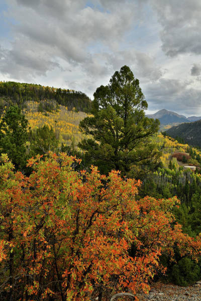 Photograph - Fall Colors Frame Sunshine Mountain by Ray Mathis