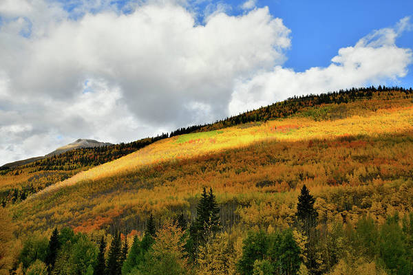 Photograph - Fall Colors Glow Along Million Dollar Highway by Ray Mathis