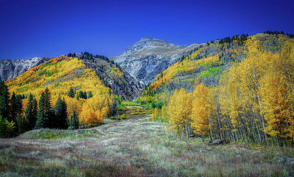 Wall Art - Photograph - Fall Colors In Colorado by Mountain Dreams