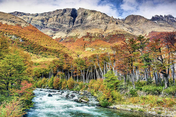 Inspirational Photograph - Fall Colors In Patagonia by Inspirational Images By Ken Hornbrook