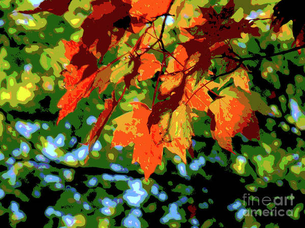 Wall Art - Photograph - Fall Colors In Quebec by Al Bourassa
