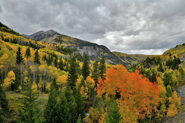 Photograph - Fall Colors Near Ilium Colorado by Ray Mathis