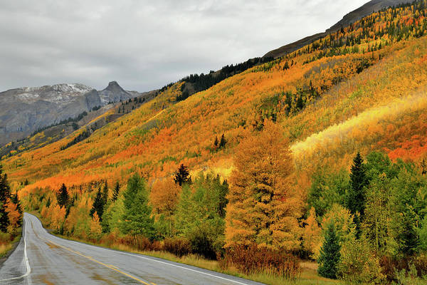 Photograph - Fall Colors Of Million Dollar Highway  by Ray Mathis