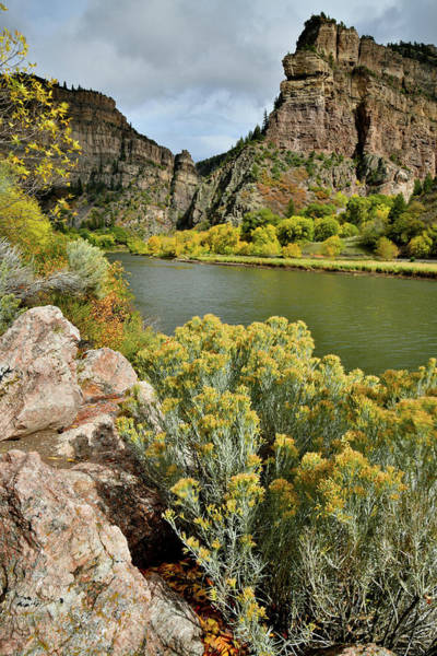 Photograph - Fall Colors On Colorado River Near Glenwood Springs by Ray Mathis