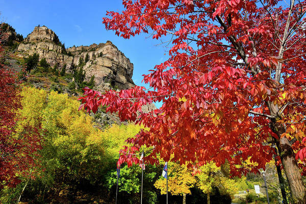 Photograph - Fall Colors Peak At Hanging Lake Rest Stop by Ray Mathis