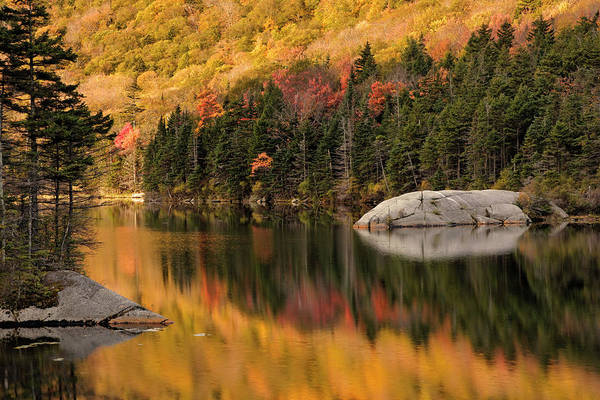 Beaver Pond Wall Art - Photograph - Fall Colors Reflected On Beaver Pond by Adam Jones