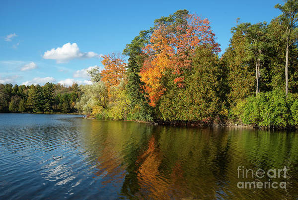 Photograph - Fall Colors Reflection by Les Palenik