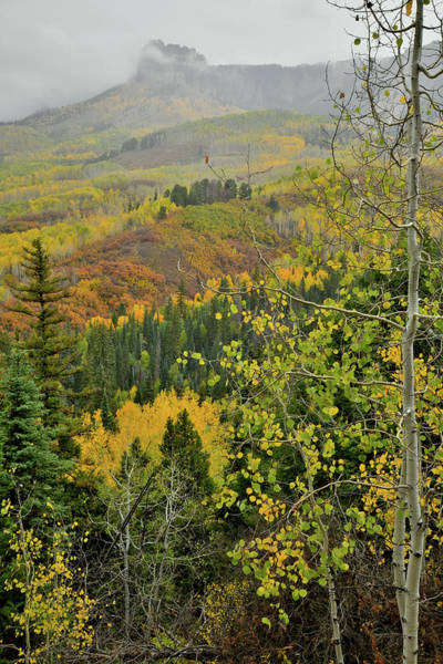 Photograph - Fall Comes To Owl Creek Pass by Ray Mathis