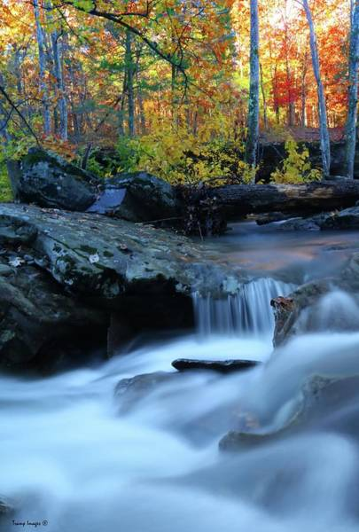 Photograph - Fall Creek by Wesley Nesbitt