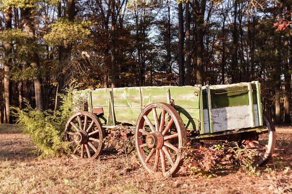 Photograph - Fall Farm Days  by Andrea Anderegg