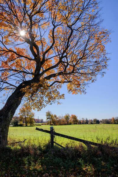 Photograph - Fall Farm by Glenn DiPaola