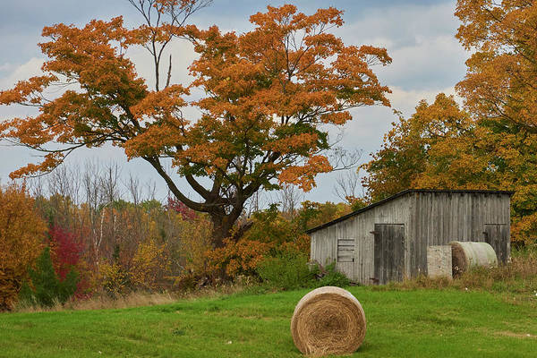Wall Art - Photograph - Fall Farm Shed by Paul Freidlund