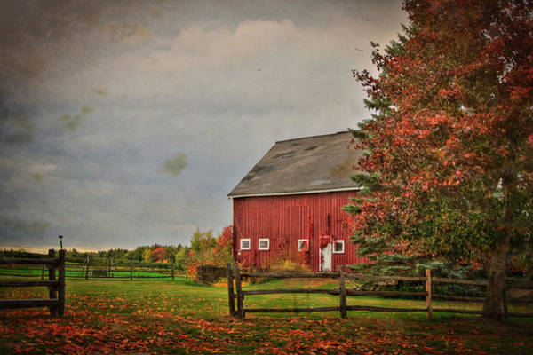 Photograph - Fall Foliage And Red Barm by Joann Vitali