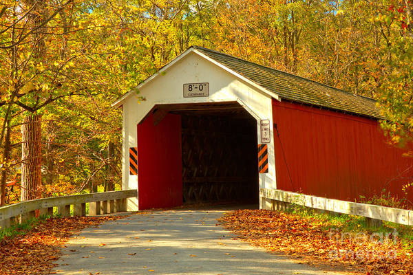 Photograph - Fall Foliage At The Eagleville Covered Bridge by Adam Jewell