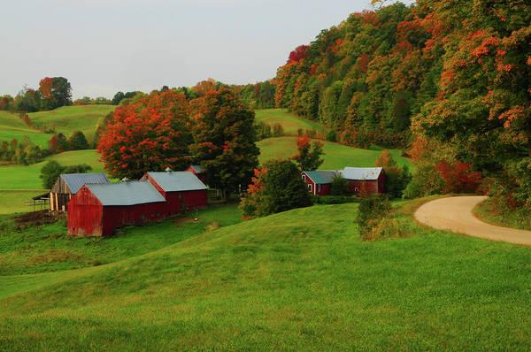 Wall Art - Photograph - Fall Foliage At The Farm by Mike Martin