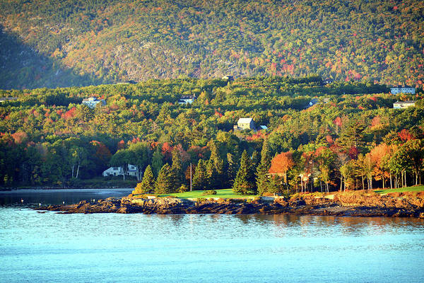 Photograph - Fall Foliage In Bar Harbor by Bill Swartwout Photography