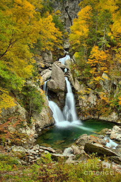 Photograph - Fall Foliage Over Bash Bish Falls by Adam Jewell