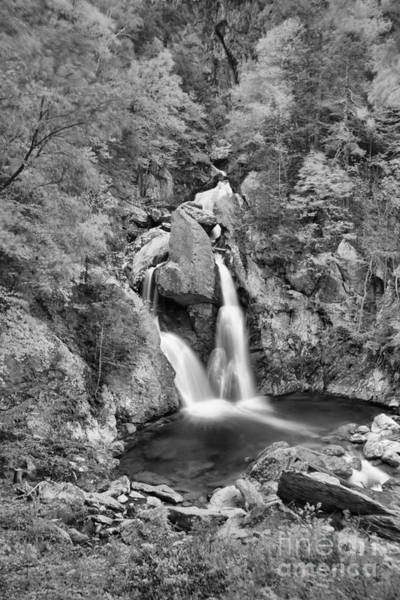 Photograph - Fall Foliage Over Bash Bish Falls Black And White by Adam Jewell