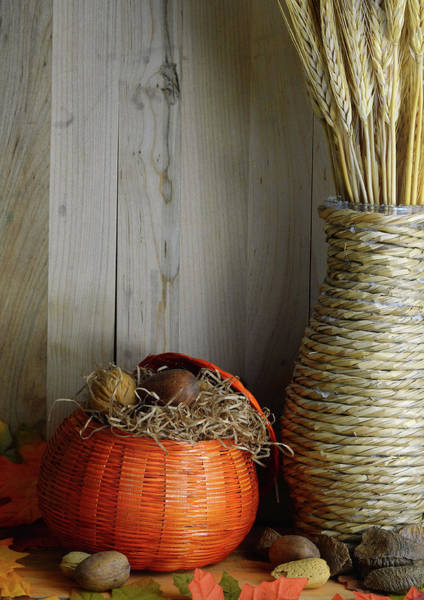Photograph - Fall Harvest Still Life by Perry Correll