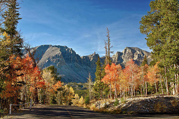 Photograph - Fall In Great Basin National Park by Robert Woodward
