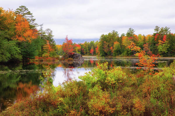 Photograph - Fall In Nh by Robert Clifford