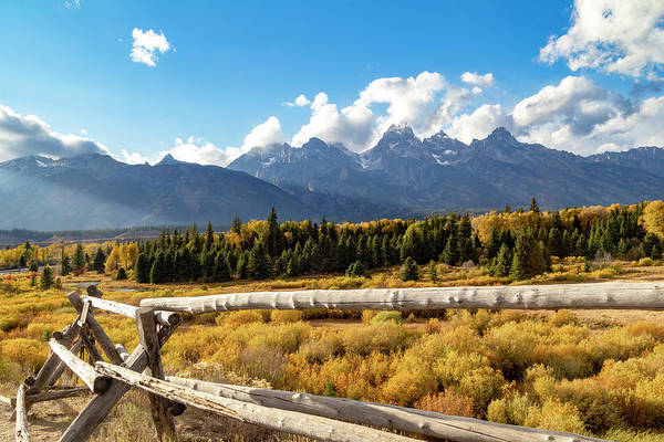 Photograph - Fall In The Tetons by Michael Chatt