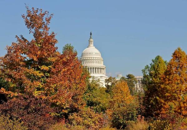 Wall Art - Painting - Fall In Us Capitol National Garden 8 by Celestial Images