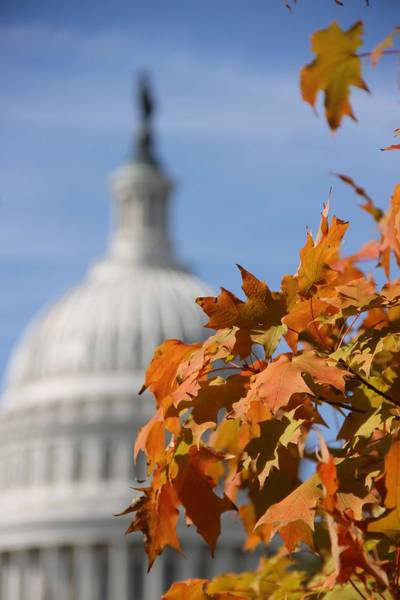 Wall Art - Painting - Fall In Us Capitol National Garden 9 by Celestial Images