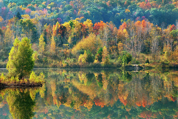Photograph - Fall Kaleidoscope by Christina Rollo