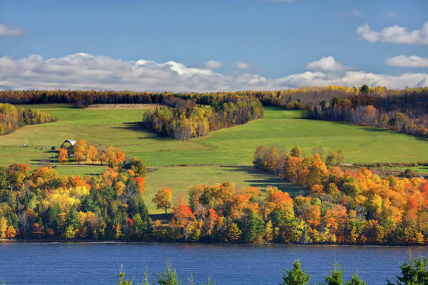 Hardwood Photograph - Fall Leaves And Green Fields On The St by Cworthy