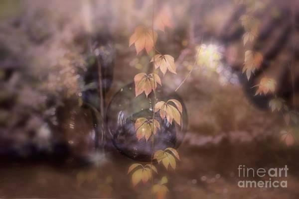 Photograph - Fall Magic by Mary Lou Chmura