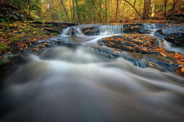 Photograph - Fall Morning At Vaughan Brook. by Rick Berk