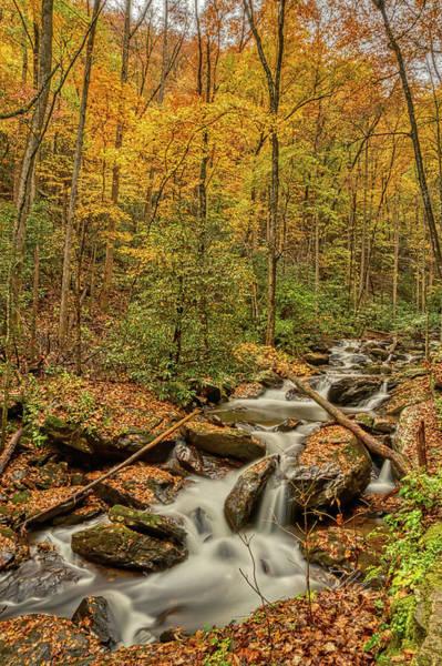 Photograph - Fall Mountain Stream by Meta Gatschenberger