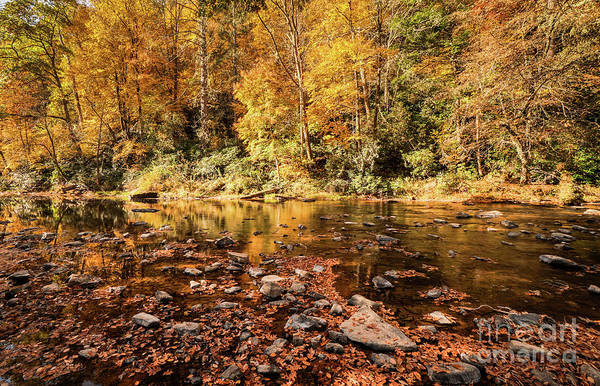 Appalachian Mountains Photograph - Fall On The River by DiFigiano Photography