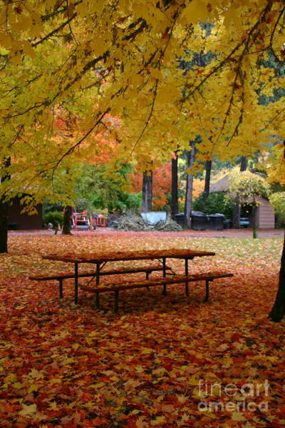 Photograph - Fall Picnic by Marie Neder