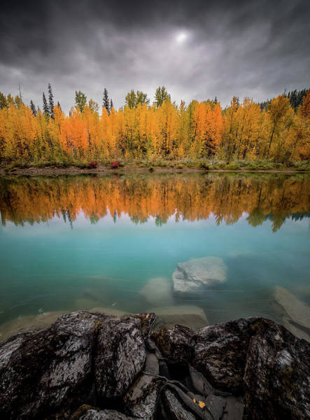 Photograph - Fall Reflection / Flathead River, Glacier National Park  by Nicholas Parker