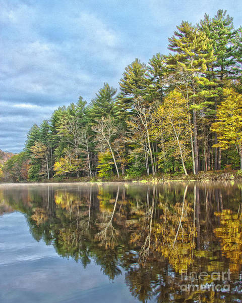 Photograph -  Fall Reflection by Tom Cameron