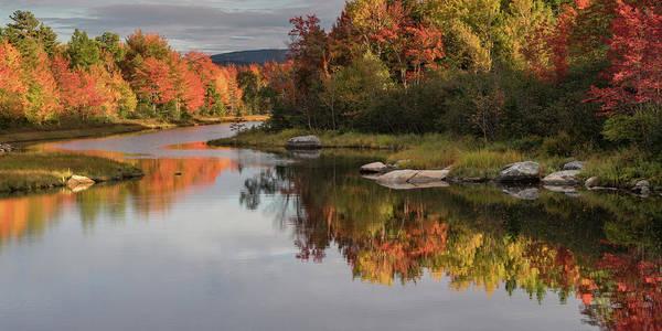 Photograph - Fall Reflections by Darylann Leonard Photography