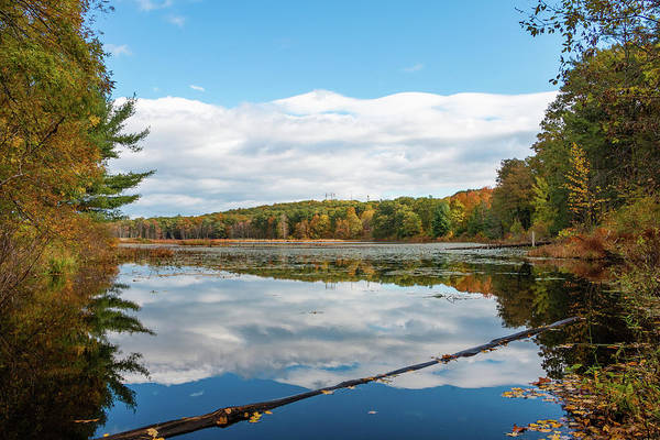 Photograph - Fall Reflections On Louisa Pond by Jeff Severson