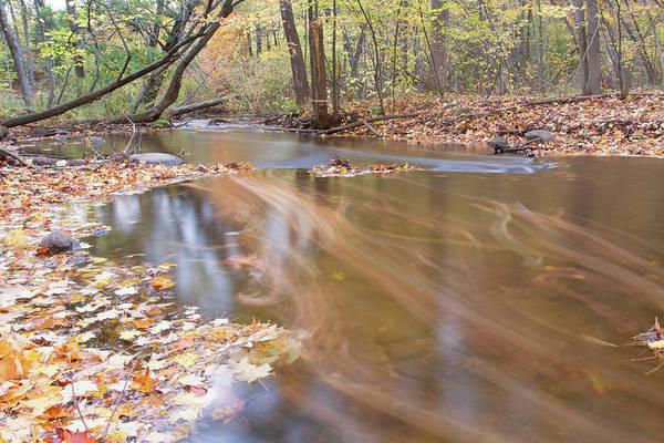 Photograph - Fall Stream 10161501 by Rick Veldman