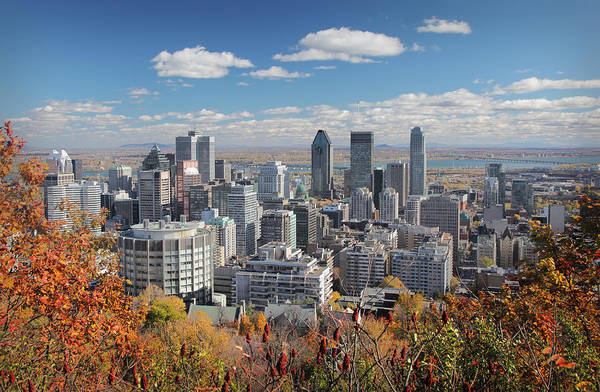 Quebec City Photograph - Fall Trees With Montreal Skyline In by Buzbuzzer