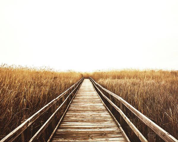 Coastal Marshes Photograph - Fall Walk I Crop by Brookview Studio